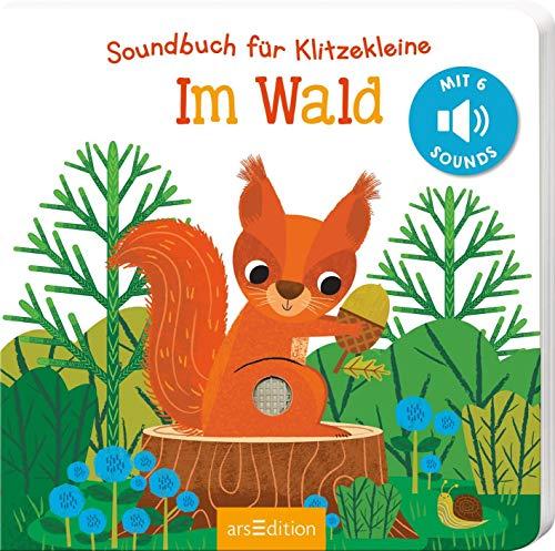 Soundbuch für Klitzekleine - Im Wald: Mit 6 leicht auslösbaren Sounds   Ein allererstes Soundbuch für kleine Kinderhände ab 12 Monaten