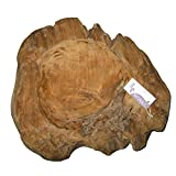 Cornbay Exklusive Wurzelholz-Schale 30 cm aus massivem Teak-Holz Natur - 3