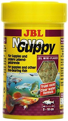 JBL NovoGuppy 30175 Alleinfutter für lebendgebärende Aquarienfische, Flocken 100 ml