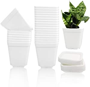24 Pcs 3 Inch Plastic Plant Pots,White Square Plastic Planters,Seedling Nursery Pots with Saucer,Flower Plant Pots Indoor Outdoor for Succulents,Flowers,Cactus,Garden Office and Balcony Decor