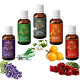Exotic Aromas Pure and Organic Essential Oil - Pack of 5