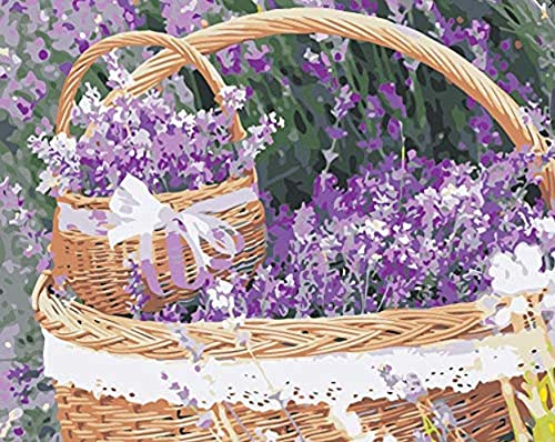 PKUOUFG DIY de Pinturas Flores en una Canasta de Flores Pintar por Numeros Adultos Niños DIY Pintura por Números con Pinceles y Pinturas 40 x 50 cm
