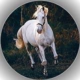 Premium Esspapier Tortenaufleger Geburtstag Pferde L34