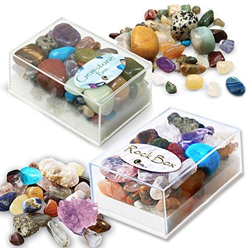 Gemstone & Rock Box Set by Fossil Gift Shop