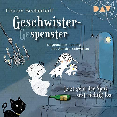 Geschwister-Gespenster cover art