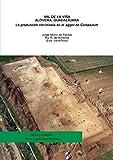 Val de la Viña (T.M. Alovera, Guadalajara). La producción vitivinícola en el territorio de Complutum
