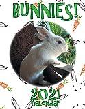 Bunnies! 2021 Calendar