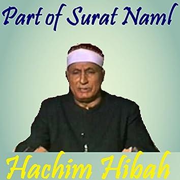 Part of Surat Naml (Quran)
