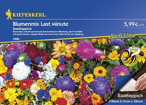 Blumenmischung Blumenmix Last Minute 2x Saatteppich (15cm x 150cm)