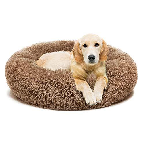 Nonofish Indestructible Dog Bed
