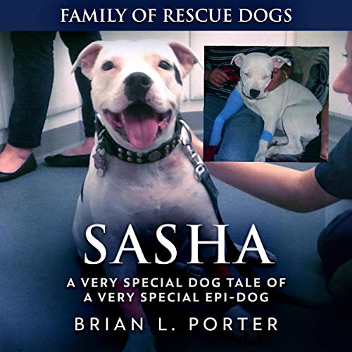 Sasha cover art