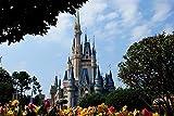Rompecabezas Adulto 3D 1000 Piezas Disneyland, Castillo De Cuento De Hadas Juguete Para Niños Rompecabezas De Madera Juego Intelectual Educativo Obra De Arte Obsequio