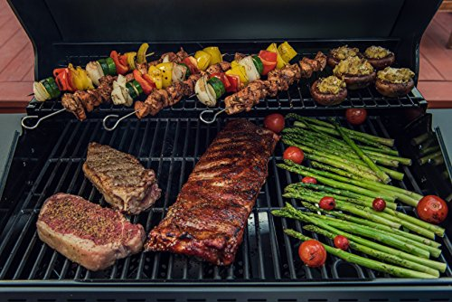 Megamaster 720-0982 Propane Gas Grill Review