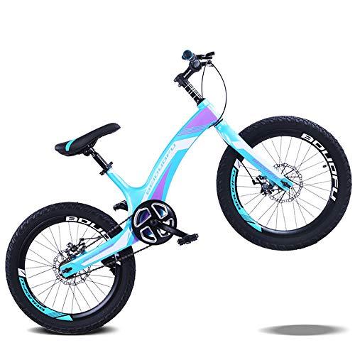 TATANE Magnesium-Legierung Für Kinder Fahrrad, 20 Zoll Gebirgsstudenten Fahrrad, Scheibenbremse Single Speed Kinderfahrrad,B,20 inches