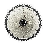 Amagogo Componentes de reparación de Repuesto de Rueda Libre de Bicicleta Cassette de Bicicleta de montaña para Ciclismo de Rueda Volante de Bicicleta - 11 velocidades 11-46T