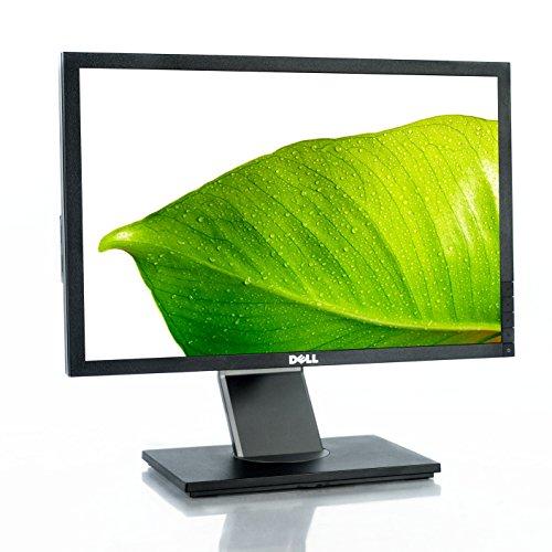 Dell Professional P1911 - LCD display - TFT - CCFL - 19' - widescreen - 1440 x 900 / 60 Hz - 250 cd/m2 - 1000:1 - 50000:1 (dynamic) - 5 ms - 0.284 mm - DVI-D, VGA