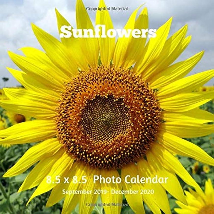 風挨拶酔ってSunflowers 8.5 X  8.5 Calendar September 2019 -December 2020: Monthly Calendar with U.S./UK/ Canadian/Christian/Jewish/Muslim Holidays-Flowers Nature Wildflowers