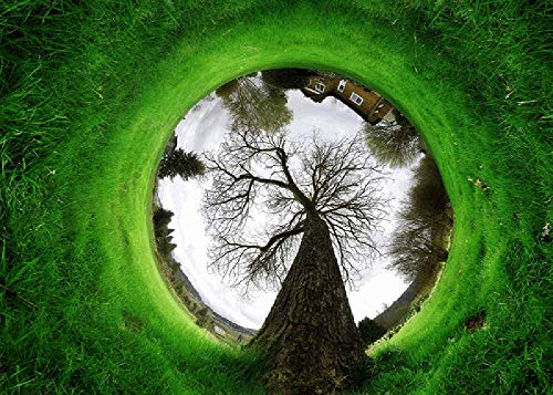 360-Grad-Objektiv, Um Die Landschaft Zu Sehen-Exquisite Hochwertige Holz 1000 Stück Puzzle Erwachsenen Kinder Pädagogisches Spielzeug Geschenk
