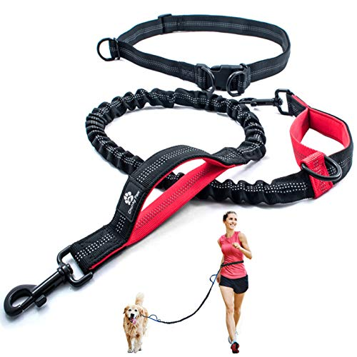 Hands Free Dog Leash for Running, Walking, Hiking,Training, Jogging for Medium and Large Dogs up to 150 lbs, Durable Dual Handle Waist Leash with Reflective Bungee and Adjustable Waist Belt