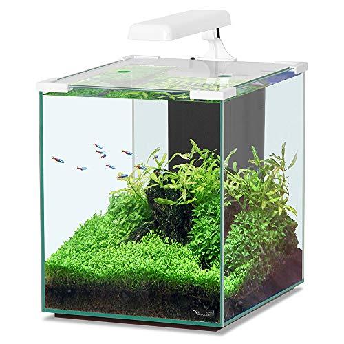 Für Aquarien, Weiß