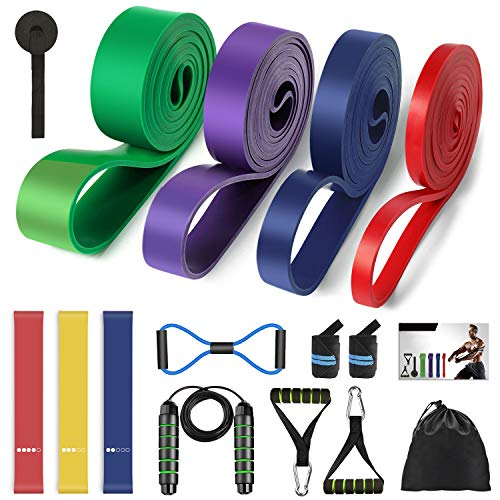 Resistance Bands Set 16PCS, 4 Pull up Assist Bands 3 Resistance Loop Bands for Home Workout Strength Training Physical Therapy, Workout Exercise Bands, Door Anchors, Wrist Straps, Jump Rope, Carry Bag