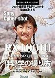 Boro Foto Kaiketu Series 107 Sony Cyber-shot RX100 III PRO Shot (Japanese Edition)