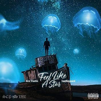 Feel Like A Star (feat. Saetheguard)