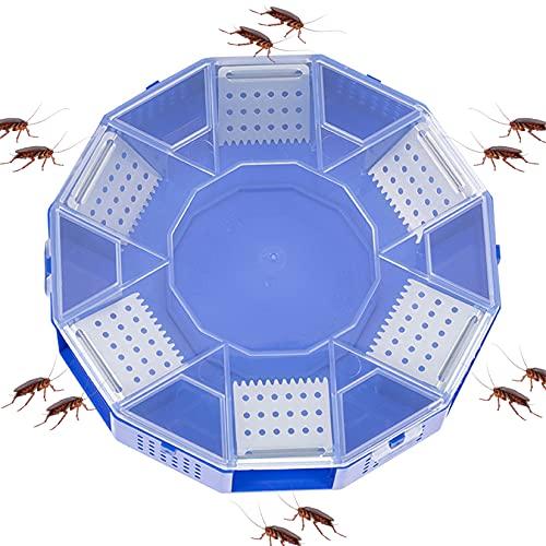 bozmi Caja de Cebo para atrapar cucarachas, 6 entradas, no tóxico, para Matar cucarachas