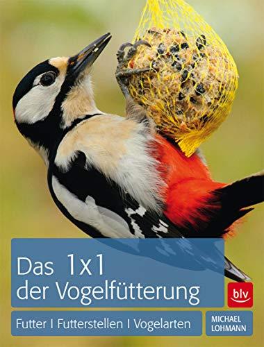 1 x 1 der Vogelfütterung: Futter | Futterstellen | Vogelarten