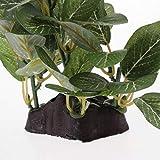 HomeDecTime 6X Rettile Terrario Serbatoio Ornamento Decorativo per Piante Finte per Rettili Anfibi