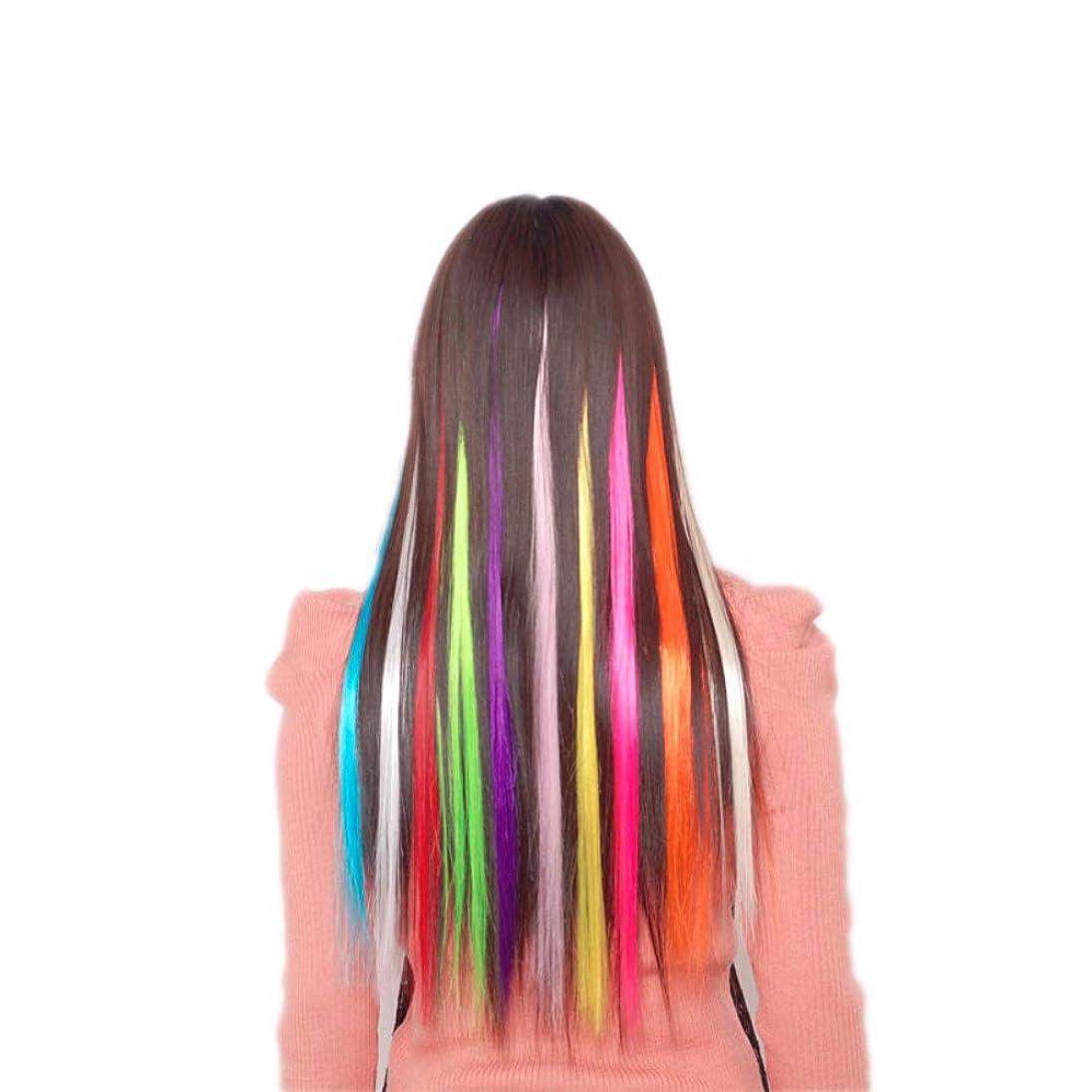 葬儀代わりにトラクターBLUCE&GRACE 全36色 カラーエクステ グラデーションカラー ウィッグ ワンタッチ 取り付け簡単 つけ毛