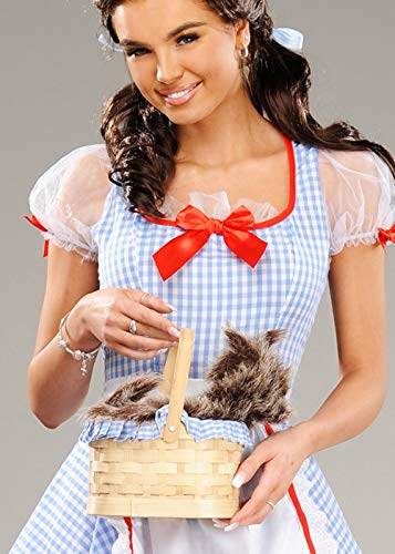 Struts Fancy Dress Magicien d'Oz Dorothy Style levrette Panier Sac à Main