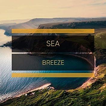 # 1 Album: Sea Breeze