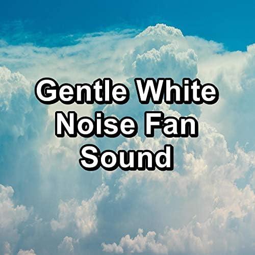 White Noise Meditation, Nature Sounds & New Age