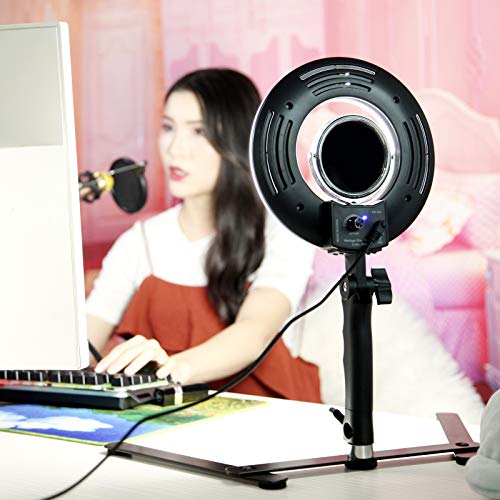 8-inch LED Selfie Ring Light for Phone Video Shooting Makeup YouTube Vine Portrait Photography with Stand Mirror Table Top Dimmable Camera Photo Lamps 24W 5500K Video Circle Lights