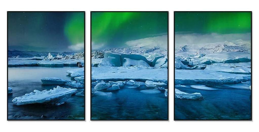 ラフレシアアルノルディパニックアデレードノーザンライツ、氷河、雪、夜 風景の写真 アルミ合金アートフレーム 額縁 壁掛け ホーム装飾画 装飾的な絵画 壁の装飾 ポスター 三連画(40x60cmx3枚 ブラックフレーム)