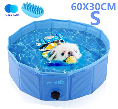 outdoor pet swimming pool