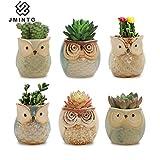 JMINTG 6 in Set 2.5 Inch Owl Pot Ceramic Flowing Glaze Base Serial Set Succulent Plant Pot with A Hole