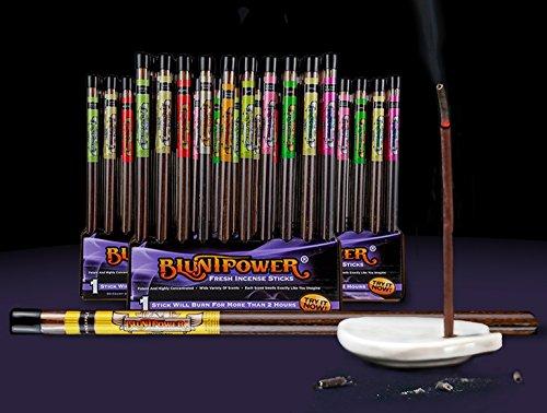 BluntPower Air Freshener Fresh Incense Sticks Assorted Scents (6ct Pack of 10) - Bulk Packing, No Cardboard Display