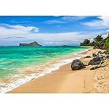 Fondos de fotografía de Cielo Azul mar Playa para Estudio fotográfico Fondos de Tela Retrato de Boda niños bebé fotomatón A2 1,5x1 m