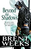 Beyond The Shadows: Book 3 of the Night Angel (Night Angel Trilogy) (English Edition)