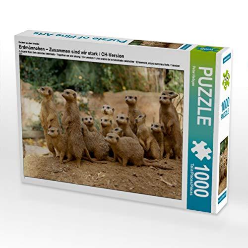 CALVENDO Puzzle Erdmännchen – Zusammen sind wir stark / CH-Version 1000 Teile Lege-Größe 64 x 48 cm Foto-Puzzle Bild von Peter Hebgen