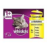 Whiskas Casserole Comida Húmeda para Gatos Selección Aves, Multipack (13 cajas x 4 sobres x 85g)