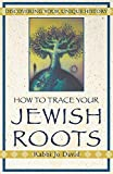 How to Trace Your Jewish Roots: Discovering Your Unique...