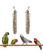 2 pezzi Cestino per pappagalli, porta frutta e verdura per uccelli, Pappagallo spiedino in acciaio inox per pappagalli, per pappagalli, uccelli, pappagalli, giocattoli per uccelli
