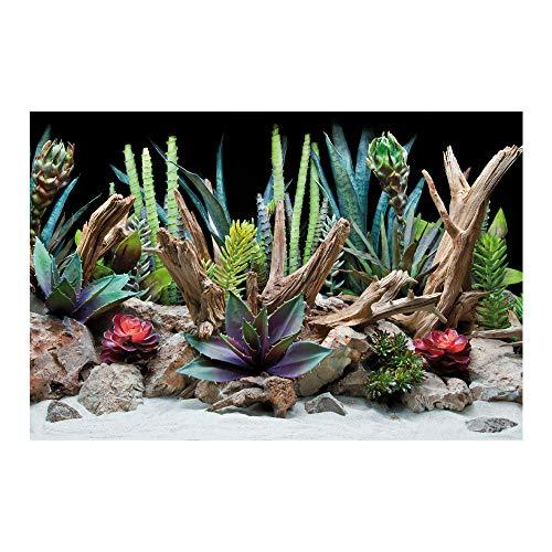 Amtra A8011578 Fondo Doble Flora Blister, 30 x 60 cm