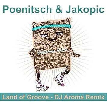 Land of Groove (DJ Aroma Remix)