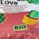 Zoom IMG-2 undergreen cactus love terriccio per