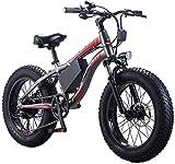 Bicicletas Eléctricas, Adultos Playa de bicicletas eléctricas, 7 velocidad del motor 250W impermeable de 20 pulgadas Frenos 4.0 Fat Tire E-bici de doble disco de motos de nieve batería extraíble ,Bici