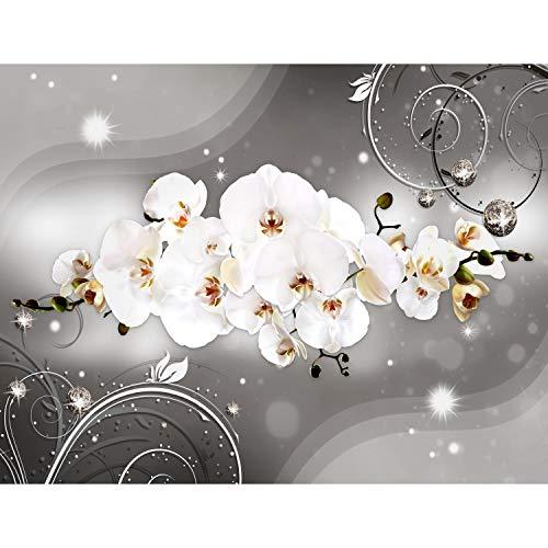 Fototapeten Blumen Orchidee 352 x 250 cm Vlies Wand Tapete Wohnzimmer Schlafzimmer Büro Flur Dekoration Wandbilder XXL Moderne Wanddeko - 100% MADE IN GERMANY - Runa Tapeten 9234011b